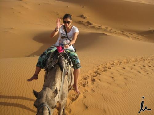 Paseo dromedario Marruecos