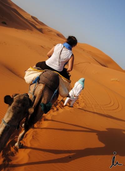 Paseo en dromedario por el desierto Marruecos