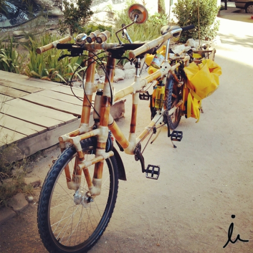 Bici bambu viajar